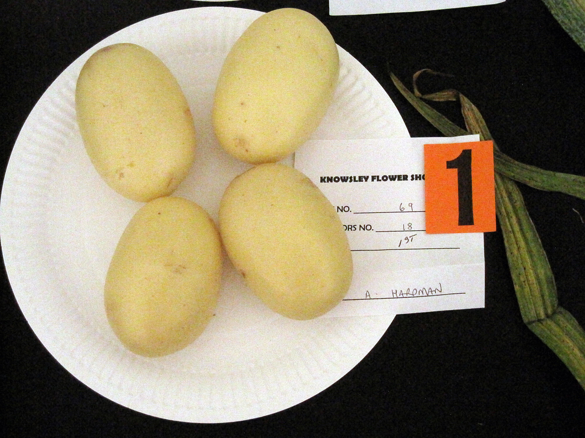 Photograph of four winning potatoes